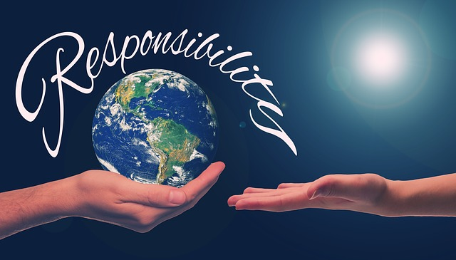 Responsible Sustainability is Your Business Success Story P
