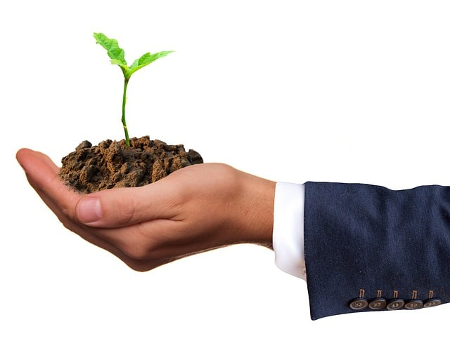 The Hottest Green Trend is Sustainable Business Practices P